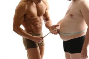 Fettverbrennung Muskelaufbau Aminosäuren